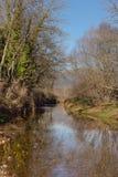 Une rivière calme de montagne images libres de droits
