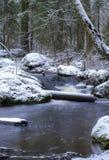 Une rivière débordante en Finlande images stock