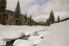 Une rivière dans une forêt neigeuse Photos libres de droits