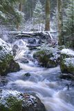 Une rivière de la blanc-eau en Finlande photographie stock libre de droits