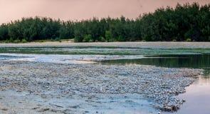 Une rivière des crabes au coucher du soleil Images stock
