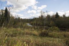 Une rivière fonctionne photo libre de droits