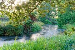 Une rivière pendant le début de la matinée dans Waikato, Nouvelle-Zélande Photo libre de droits
