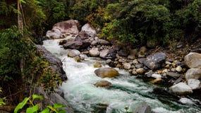 Une rivière puissante dans une jungle foncée photos stock
