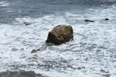 Une roche dans l'océan pacifique Images libres de droits