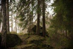 Une roche dans la forêt photos stock