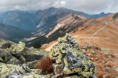 Une roche en montagnes Photo libre de droits