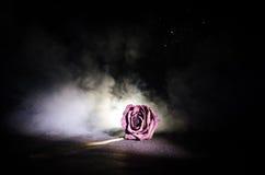 Une rose de fanage signifie l'amour perdu, divorce, ou de mauvaises relations, morts ont monté sur le fond foncé Photographie stock libre de droits