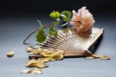 Une rose de l'amour et de l'abanico pour chaud Photo libre de droits