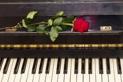Une rose de rouge sur le piano Photographie stock libre de droits