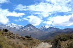 Une route à la neige Photographie stock libre de droits