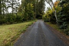 Une route étroite dans la forêt et le panneau routier rouge Images stock