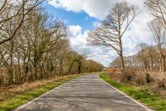 Une route bordée d'arbres dans la campagne du Sussex image libre de droits