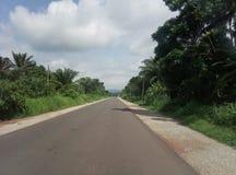 Une route claire avec la végétation riche photos libres de droits