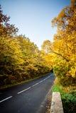 Une route colorée d'automne Image libre de droits