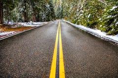 Une route d'hiver Photos libres de droits