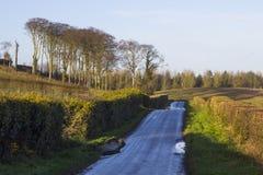 Une route de campagne humide d'asphalte en Irlande du Nord fonctionnant dans la distance et flanquée de chaque côté de l'aubépine Photos libres de droits