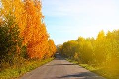 Une route de campagne par la forêt Image stock