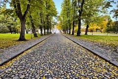 Une route en pierre pendant la saison d'automne Image libre de droits