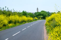 Une route par le champ Photo stock