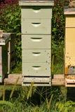 Une ruche de cinq piles images stock