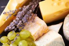 Une sélection de fromage fin Photo libre de droits
