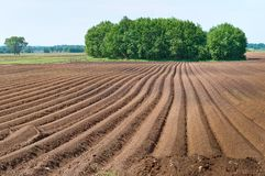 Une série de champ plantant, les terres cultivables labourées, okuchit a traité les champs agricoles Images stock