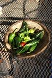 Une série de piments verts frais Image stock