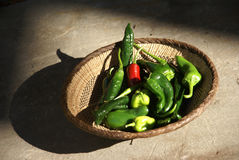 Une série de piments verts frais Images stock