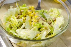 Une salade de thon Photo libre de droits