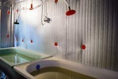 Une salle pour la friture de poissons grandissante Bath pour la friture Une poisson-crèche Photographie stock libre de droits
