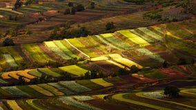 Une scène colorée dans la prairie de Bashang dans la saison de temps de récolte d'automne et les un bon nombre de nuages dans le  photographie stock