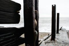 Une scène de bord de la mer, sable en bois de pierre de roche photographie stock libre de droits