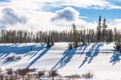 Une scène de neige d'hiver Photos stock