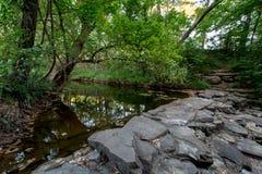 Une scène extérieure de ressort tranquille ou de nature boisée d'été. image libre de droits