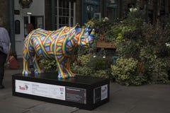 Une sculpture en rhinocéros de fibre de verre peinte par Patrick Hughes au marché de Covent Garden, un de 21 différents modèles p photographie stock libre de droits