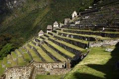 Une section des terrasses de roche aux ruines de Machu Picchu, Pérou Image stock