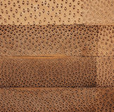 Bois en bambou Image stock