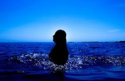 Une sirène émerge de la mer et du x28 ; 27& x29 ; Images stock