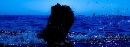 Une sirène émerge de la mer et du x28 ; 8& x29 ; Photo libre de droits