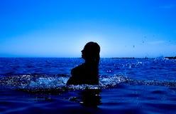 Une sirène émerge de la mer et du x28 ; 29& x29 ; Photos stock