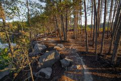 Une soirée chaude d'été sur le rivage de la carrière Autour de élevez les arbres L'eau reflète les arbres Photo libre de droits