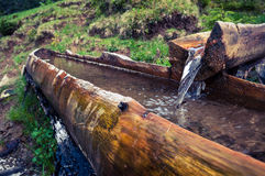 Une source dans les montagnes dans une cuvette en bois Photo libre de droits