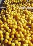 Une stalle de marché libre montrant les prunes jaunes Photos stock