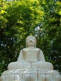 Une statue blanche de Bouddha Image libre de droits
