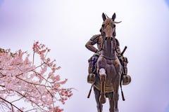 Une statue de Masamune Date présentant à cheval Sendai Castle dans des fleurs de cerisier de pleine floraison, parc d'Aobayama, S images stock
