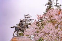 Une statue de Masamune Date présentant à cheval Sendai Castle dans des fleurs de cerisier de pleine floraison, parc d'Aobayama, S photos libres de droits