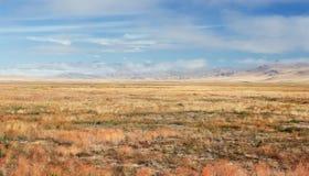 Une steppe large avec l'herbe jaune sur le plateau d'Ukok Photographie stock