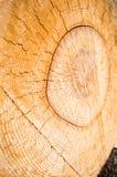 Une surface en bois de rondin de coupe géante images stock