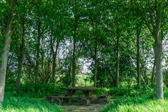 Une table de bois Images stock